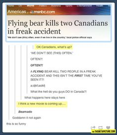 funny-bear-accident-Canada
