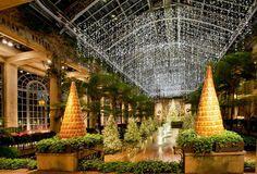Longwood Gardens Christmas, just 40 minutes outside of Philadelphia