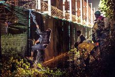 Über den Sicherheitszaun versuchen viele, zum Eurotunnel-Terminal Coquelles zu kommen
