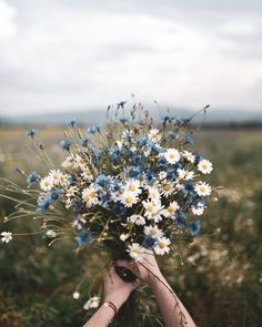 Blue and white floral bouquet photo by Dominika Brudny at Do.- Blue and white floral bouquet photo by Dominika Brudny at Dominika Brudny on Ins Blue and white floral bouquet photo by Dominika Brudny at Dominika Brudny on Ins… – - Colorful Flowers, Wild Flowers, Beautiful Flowers, Beautiful Pictures, Flowers Nature, Nature Plants, Boquette Flowers, Spring Flowers, Bunch Of Flowers