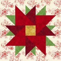 Twirling Poinsettia Quilt Block $3.49 on Pam's Club at http://pamsclub.com/main-store-menu/13-e-patterns-pdf/24-blocks-for-all-occasions/360-twirling-poinsettia