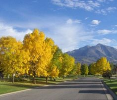 Mt. Sopris~Colorado Fall