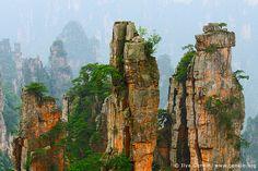 Stone Pillars in Zhangjiajie, Tianzi Mountain Nature Reserve, Zhangjiajie National Park, Hunan, China by ILYA GENKIN / GENKIN.ORG
