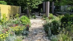 This lovely drought tolerant garden was shown in the Chelsea Flower Show in 2011 in London. It was the best in show garden and was awarded to the Daily Telegraph Garden, designed by Cleve West of Austrailia. It features Lambs ears, yarrow,