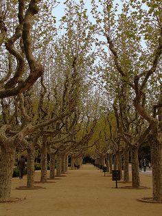 Barcelona | Parc de la Ciutadella