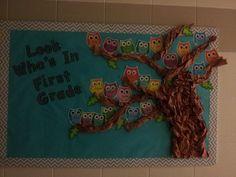 Owl and chevron bulletin board. Owl Bulletin Boards, Owl Quotes, School Doors, Sunday School Activities, 2nd Grade Classroom, Fall Crafts, Classroom Decor, Kindergarten, Crafty