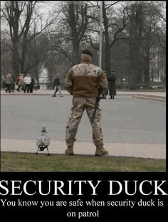 Funny pictures about Security Duck is on patrol. Oh, and cool pics about Security Duck is on patrol. Also, Security Duck is on patrol. Funny Animals With Captions, Funny Pictures With Captions, Cute Funny Animals, Picture Captions, Funny Animal Pictures, Funny Cute, Best Funny Pictures, Funny Photos, The Funny