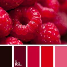 Цветовая палитра №1593