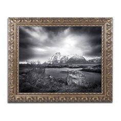 Trademark Fine Art Ice Pick Canvas Art by Philippe Sainte-Laudy, Gold Ornate Frame, Size: 16 x 20