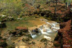 Nacedero del Urederra :: El Nacedero del Urederra es uno de los enclaves más espectaculares de Navarra, siendo declarado reserva natural en 1987.    Situado al norte de Estella, es la salida natural del acuífero formado en el macizo kárstico de Urbasa.   Más fotos del Nacedero del Urederra en http://www.flickr.com/photos/rlasaosa/sets/72157625383897102/with/5175930794/