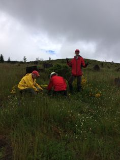 Jerry, Jason, and Lacie. - Weed Rodeo 2014 #mtsthelens