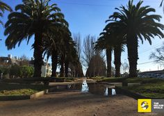 La Serena, Chile - 2015 - camera iPhone 6 - by The Helium Whale