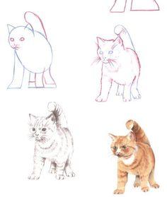 Commentaire DESSINER les chats en 3535 commentaire de dessiner de Ethic