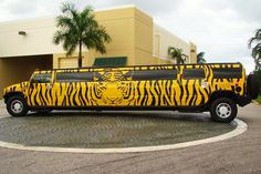 TIGER STYLE! - Can you tame this baby? https://buffer-media-uploads.s3.amazonaws.com/571514461c2e3676450a96c8/57190eed33dae3c4227ca68d/28b9ee3ee61acf3dbcbe82f6fb35360c.jpeg #limo #wedding #birthday #prom #partybus #limousine #sweet16 #anniversary #bachelor #bachlorette