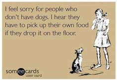 people who do not have dogs