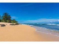 HANALEI COLONY RESORT D1, Haena, HI 96714 - Condo for Sale - Hawaii Life