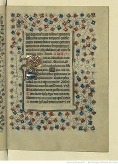 vue 81 - folio 38r