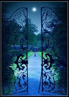 evocativesynthesis:    Moonlit Garden Gate, Provence, France