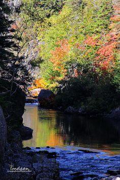 Lamanche - East Coast Trail, Newfoundland, CANADA