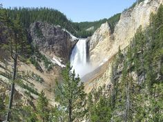 Parque de Yellowstone USA