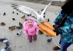 Ibu dan anak memberi makan burung di ibukota Belarus, Minsk. (6 Februari 2014)
