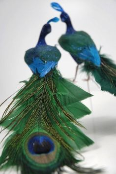 8 inch Wedding Teal Green/Blue Peacock Feathers by tennesseewaltz Peacock Crochet, Peacock Bird, Peacock Feathers, Peacock Room, Peacock Wreath, Peacock Decor, Lovely Eyes, Beautiful Birds, Save On Crafts