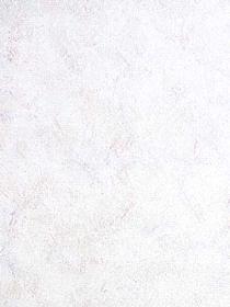 Book #: 1554, Steve's Wallpaper