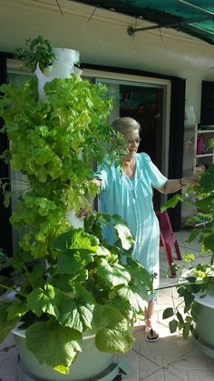 Looks Great Growing Your Own Healthy Herbs And Veggies!! The Tower Garden  From Juice