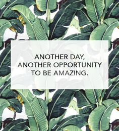 """PINSPIRATIONAL WORDS OF WISDOM: """"Another day, another opportunity to be amazing."""" #quote"""