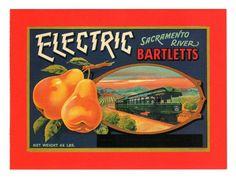 Orange-Crate Label Art Repro.  # 4