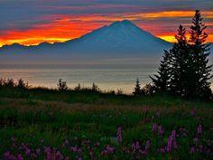 Kenai, Alaska.