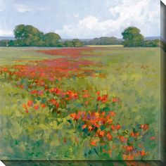 New, limited edition gallery-wrapped art comes with a certificate of authenticity. Artist: Kim Coulter Title: Red Poppies II Product type: Giclee canvas art Image dimensions: 40 inches wide x 40 inche