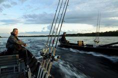 Lohenkalastusta Tornionjoella Pellossa