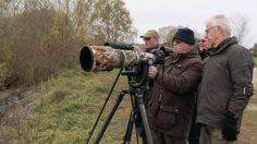 Kraanvogels fotograferen vergt geduld en kilo's duur glas... Maar het geeft veel plezier. #willemlaros.nl #fotograaf #reisfotografie #reisblog #reizen #reisjournalist #fotoworkshop #landschapsfotografie #redacteur #flickr #fbp #500px
