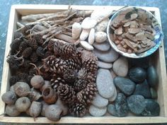 Reggio inspired loose parts for open ended exploration