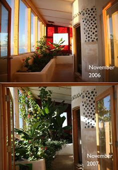Grey water planter in earthship home after 1 year growth. In front of garage Natural Building, Green Building, Building A House, Green Architecture, Sustainable Architecture, Building Architecture, Residential Architecture, Contemporary Architecture, Villas