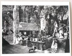 Frida Kahlo in the garden of Casa Azul