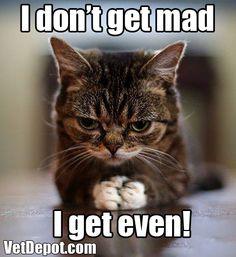 I don't get mad.... I get even! lol