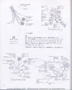 Gallery.ru / Фото #53 - 29 Herb embroidery - simplehard
