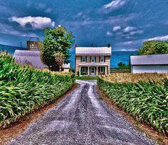 Home on the farm.