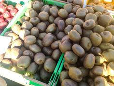 Kiwifruit at a Wellington market - New Zealand