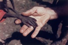 A photograph by Kevin Carter. The images by this man make me want to cry, and certainly have an air of hopelessness, nearly a decade later, many human beings still suffer from such severe malnutrition