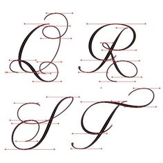 Q-T flourished Copperplate with vector points. Q-T flourished Copperplate with vector points. Calligraphy Fonts Alphabet, Copperplate Calligraphy, Calligraphy Doodles, Hand Lettering Alphabet, Calligraphy Handwriting, Alphabet Art, Script Lettering, Calligraphy Background, Typography