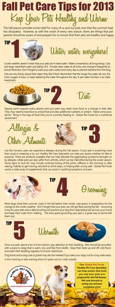 1000 images about ahg pet care on pinterest pet care pet care tips