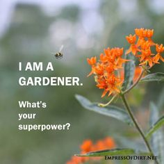 I am a gardener. What's your superpower? Garten Sprüche Sign with a bee