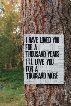"""""""A Thousand Years"""" - Christina Perri...Our first dance song...definitely making one of these for the wall"""