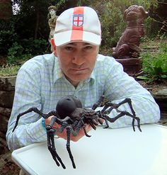Dr Karl Shuker with giant spider model - ShukerNature: July 2011 Giant Spider, Spider Webs, Big Spiders, Cool Insects, Spider Costume, Homemade Halloween Decorations, Beautiful Bugs, Bizarre, Cryptozoology