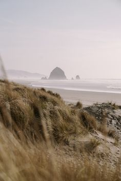 photos to inspire you to visit Oregon's incredible central coast. From Tillamook to Cannon beach, there are incredible places to see. Oregon Coast Roadtrip, Oregon Beaches, Oregon Travel, Travel Usa, Columbia Travel, Seaside Oregon, Beach Travel, Beach Aesthetic, Travel Aesthetic