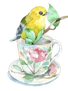 Yellow bird and Tea Cup watercolor painting Art And Illustration, Illustrations, Watercolor Illustration, Watercolor Bird, Watercolor Animals, Watercolor Paintings, Tea Cup Art, Tea Cups, Grey Tea