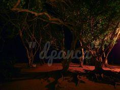 angkat ransel: Nusa dua beach, Bali